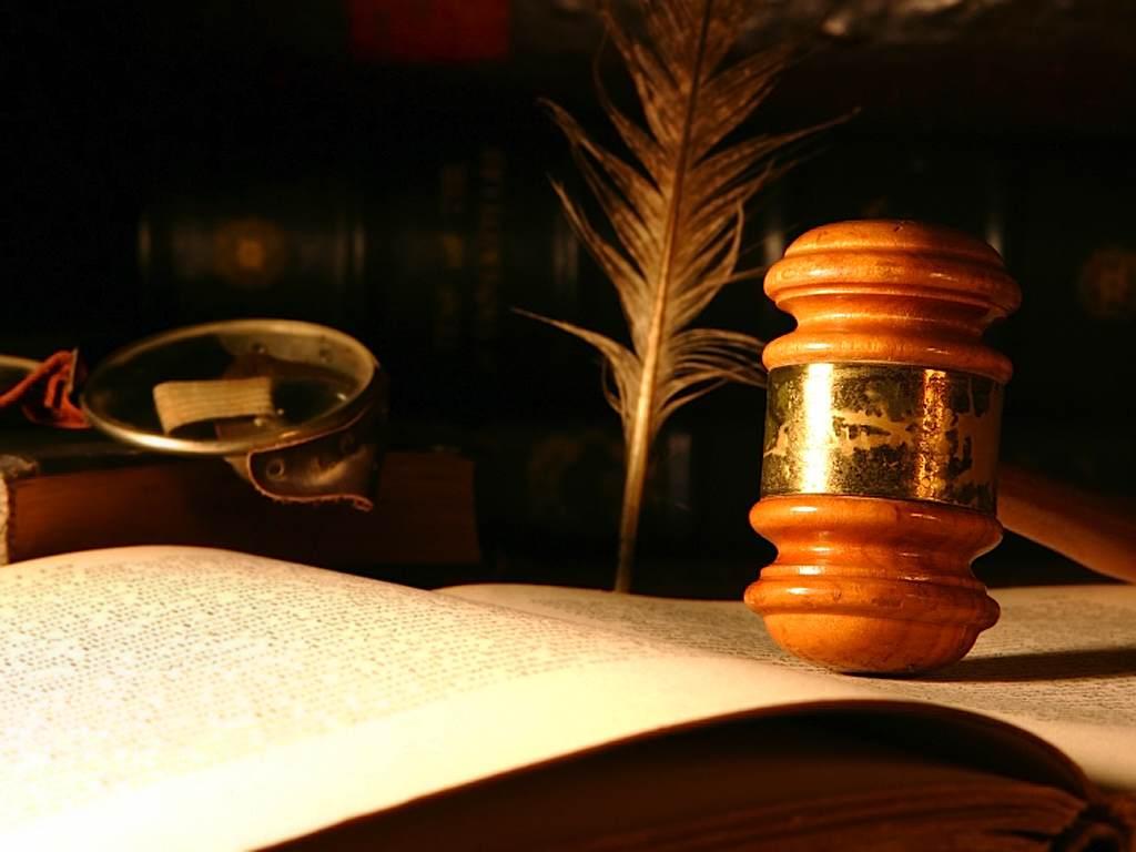 производственная практика отчет по юридической консультации